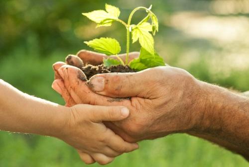 Umweltschutz, eine Frage der Fairness gegenüber unseren zukünftigen Generationen